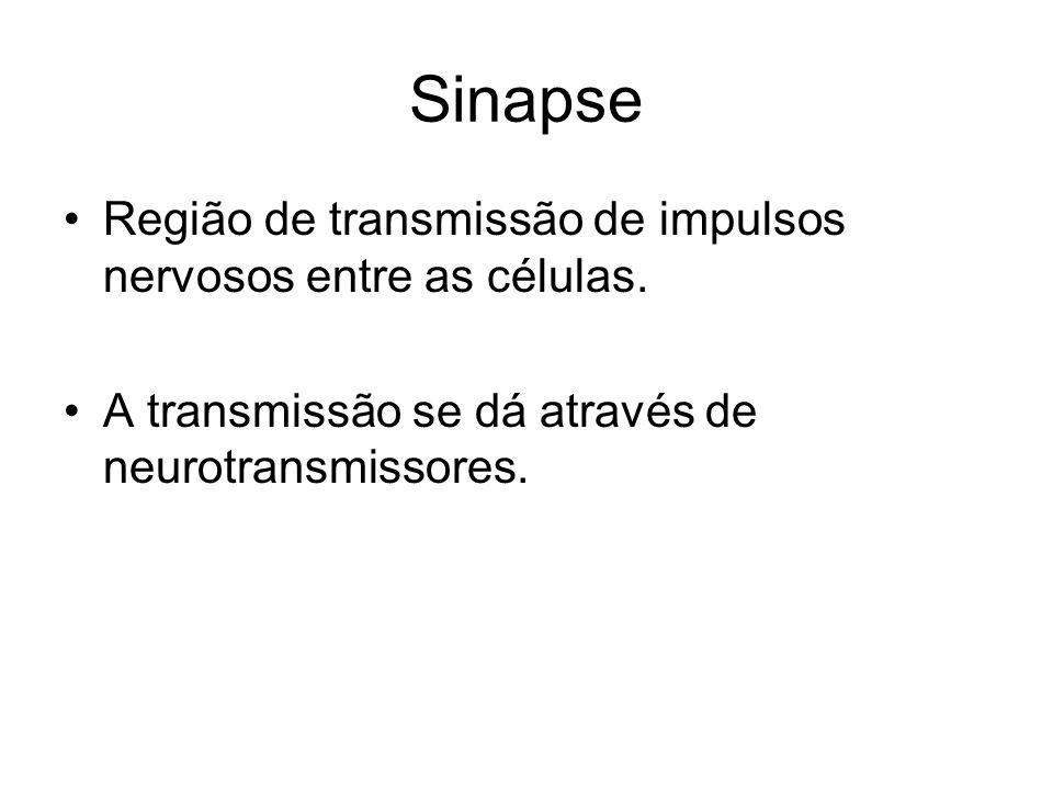 Sinapse Região de transmissão de impulsos nervosos entre as células. A transmissão se dá através de neurotransmissores.