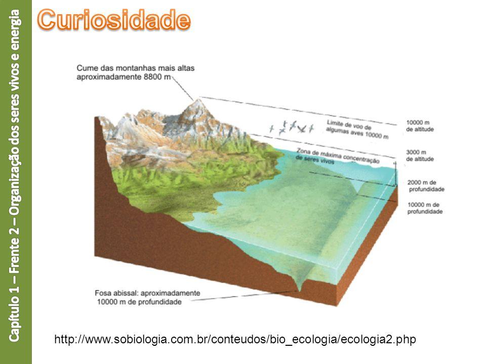 http://www.sobiologia.com.br/conteudos/bio_ecologia/ecologia2.php