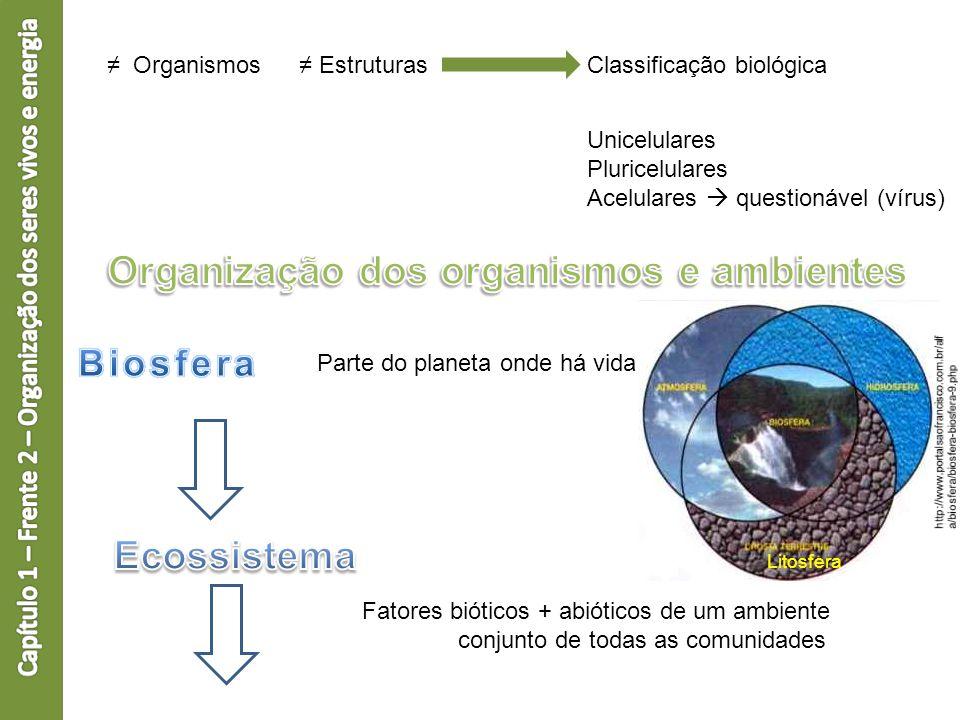 Organismos EstruturasClassificação biológica Unicelulares Pluricelulares Acelulares questionável (vírus) Parte do planeta onde há vida Litosfera Fator