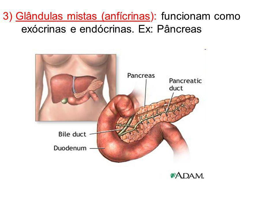 3) Glândulas mistas (anfícrinas): funcionam como exócrinas e endócrinas. Ex: Pâncreas