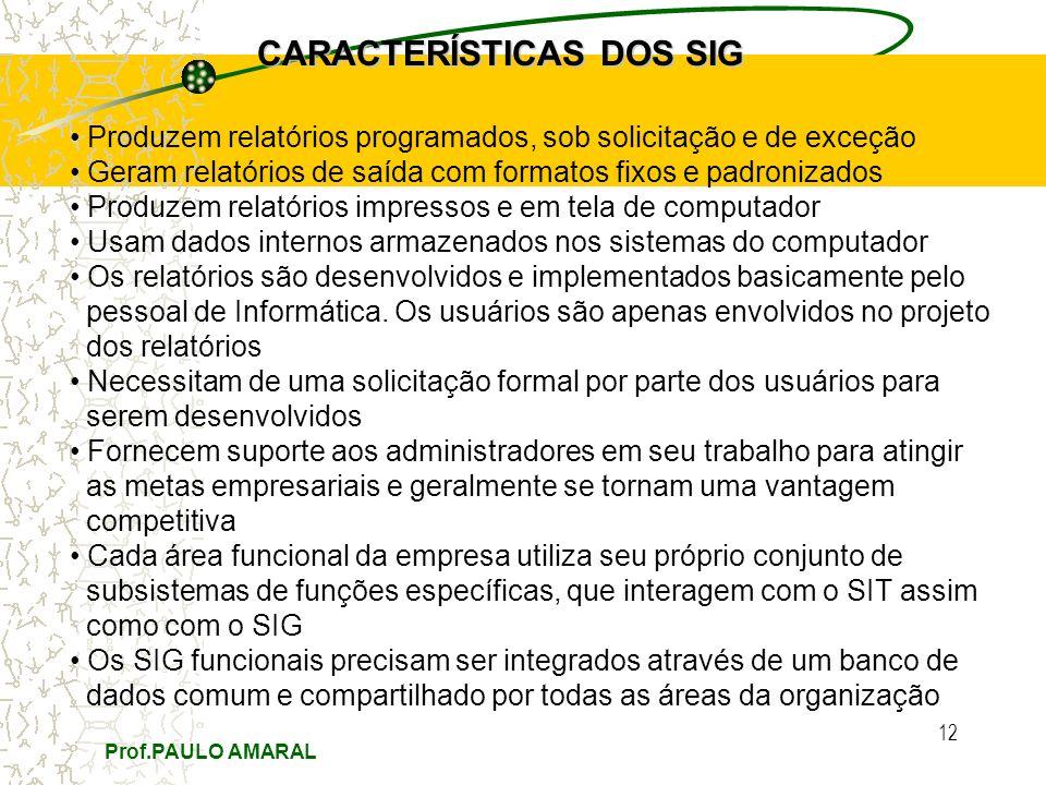 Prof.PAULO AMARAL 12 CARACTERÍSTICAS DOS SIG Produzem relatórios programados, sob solicitação e de exceção Geram relatórios de saída com formatos fixo
