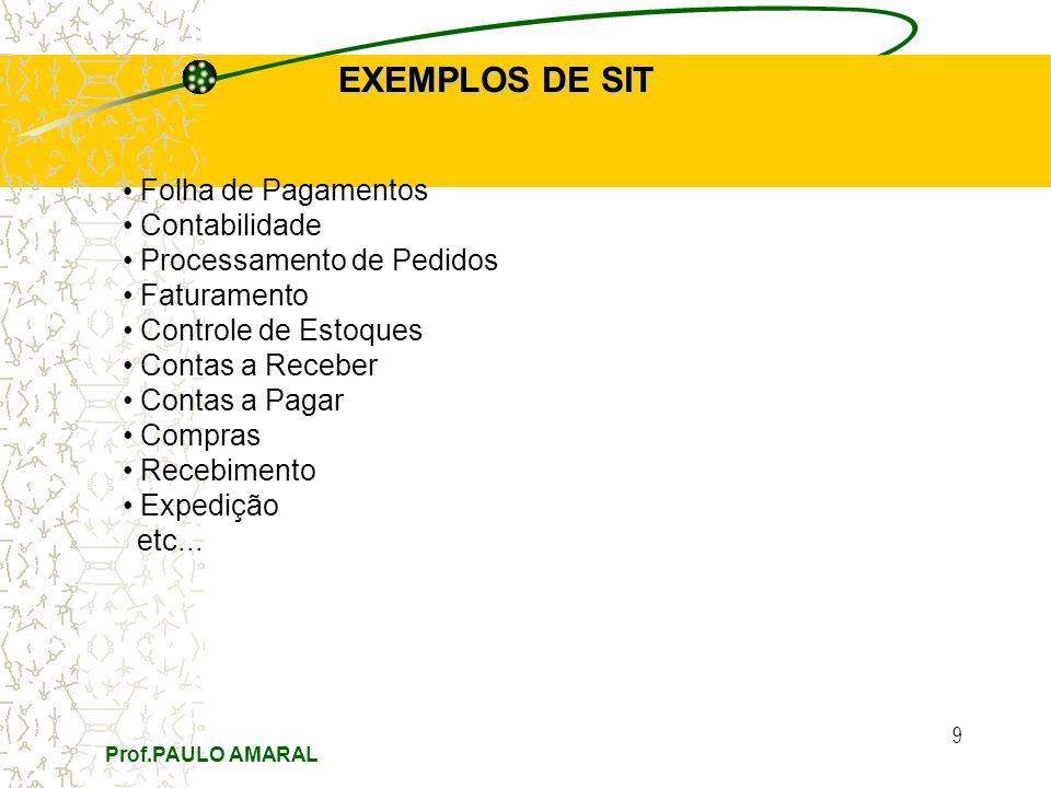 Prof.PAULO AMARAL 9 EXEMPLOS DE SIT Folha de Pagamentos Contabilidade Processamento de Pedidos Faturamento Controle de Estoques Contas a Receber Conta