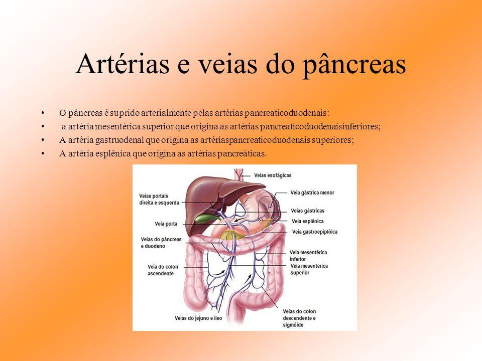 Função do Pâncreas No microscópio, quando corado adequadamente, é fácil se distinguir os dois tipos diferentes de tecidos pancreáticos, essas regiões