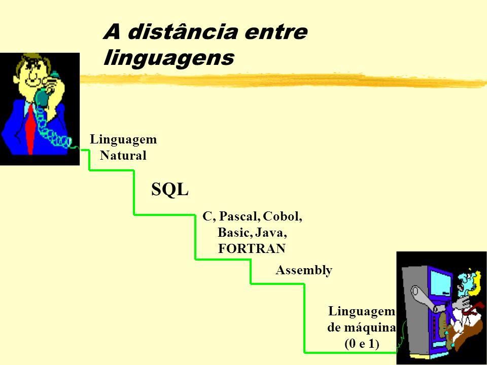 21 A distância entre linguagens C, Pascal, Cobol, Basic, Java, FORTRAN Linguagem Natural Assembly Linguagem de máquina (0 e 1 ) SQL