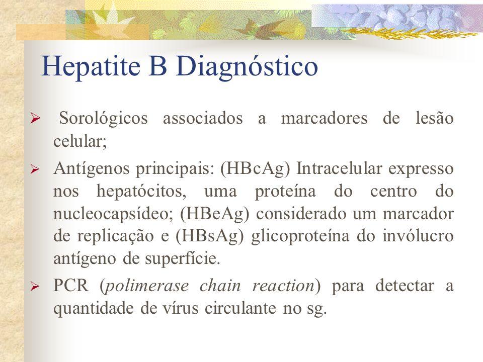 Hepatite B Diagnóstico Sorológicos associados a marcadores de lesão celular; Antígenos principais: (HBcAg) Intracelular expresso nos hepatócitos, uma proteína do centro do nucleocapsídeo; (HBeAg) considerado um marcador de replicação e (HBsAg) glicoproteína do invólucro antígeno de superfície.