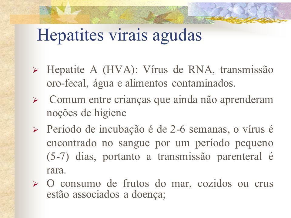Hepatites virais agudas Hepatite A (HVA): Vírus de RNA, transmissão oro-fecal, água e alimentos contaminados.