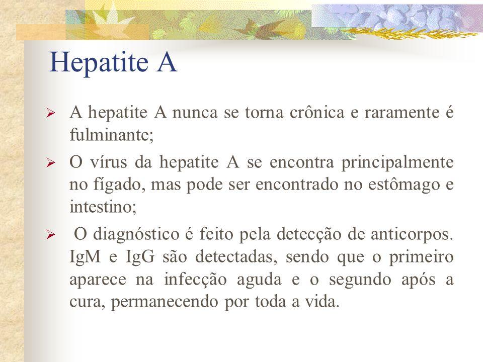Hepatite A A hepatite A nunca se torna crônica e raramente é fulminante; O vírus da hepatite A se encontra principalmente no fígado, mas pode ser encontrado no estômago e intestino; O diagnóstico é feito pela detecção de anticorpos.