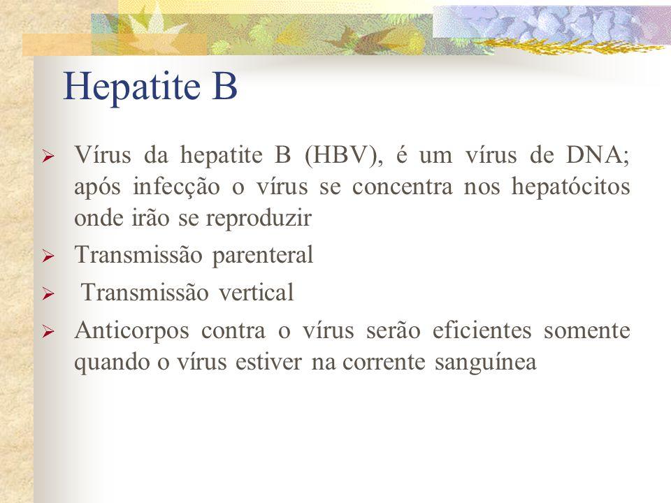 Hepatite B Vírus da hepatite B (HBV), é um vírus de DNA; após infecção o vírus se concentra nos hepatócitos onde irão se reproduzir Transmissão parenteral Transmissão vertical Anticorpos contra o vírus serão eficientes somente quando o vírus estiver na corrente sanguínea