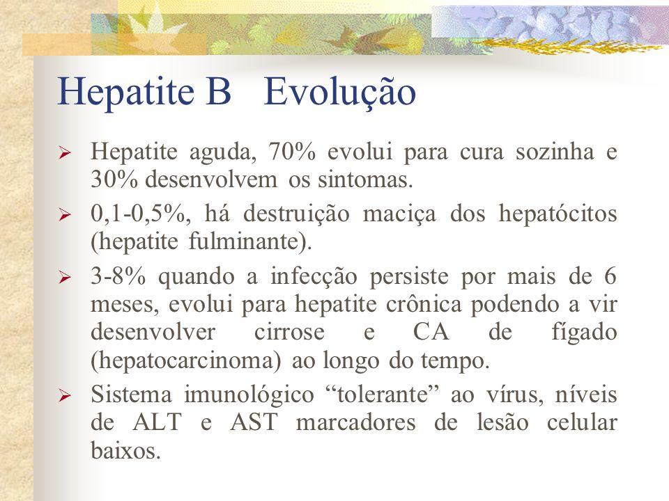Hepatite B Evolução Hepatite aguda, 70% evolui para cura sozinha e 30% desenvolvem os sintomas.