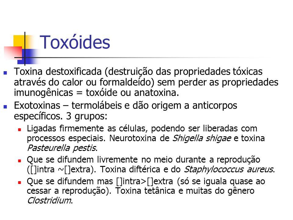 Toxóides Toxina destoxificada (destruição das propriedades tóxicas através do calor ou formaldeído) sem perder as propriedades imunogênicas = toxóide