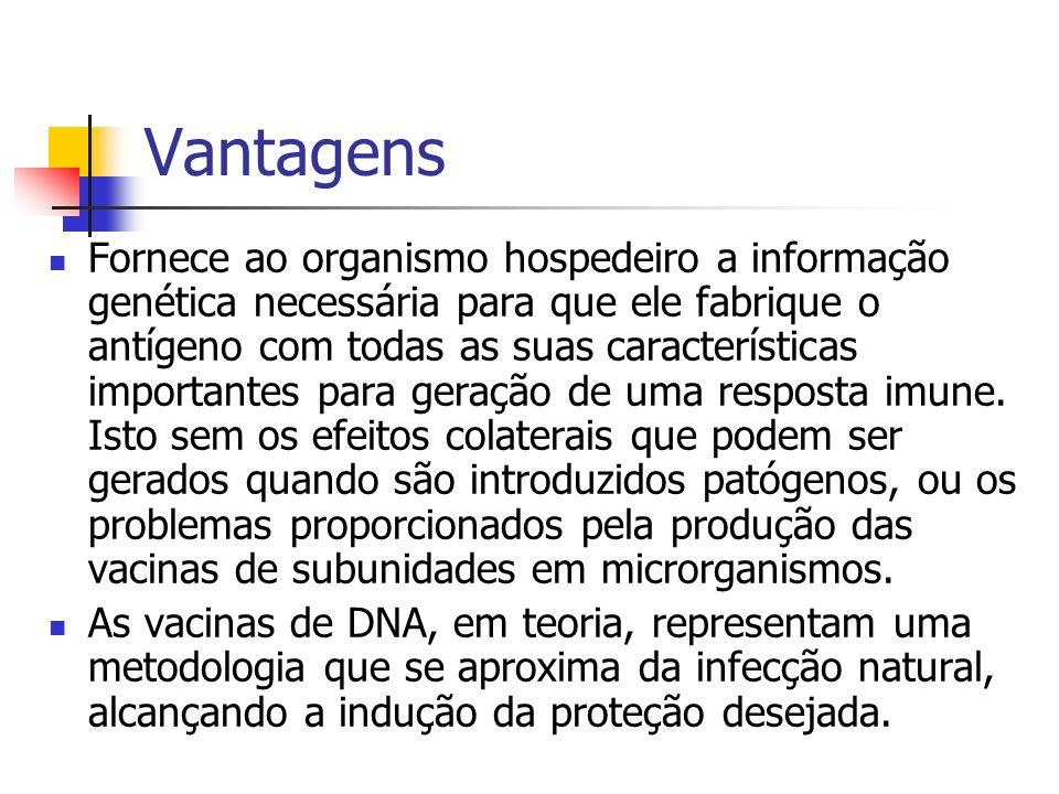 Vantagens Fornece ao organismo hospedeiro a informação genética necessária para que ele fabrique o antígeno com todas as suas características importan