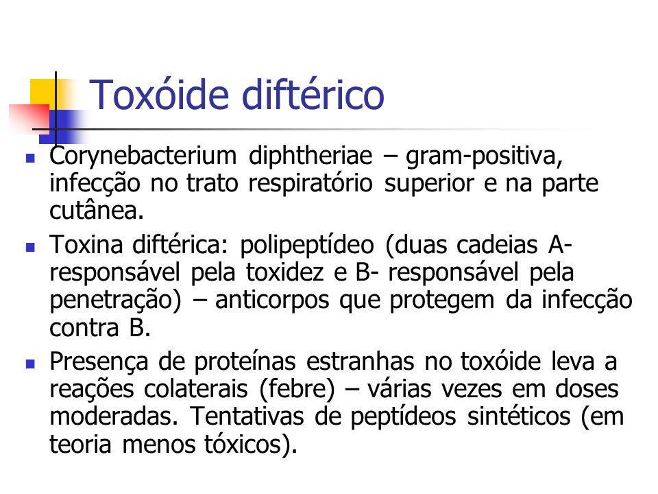Toxóide diftérico Corynebacterium diphtheriae – gram-positiva, infecção no trato respiratório superior e na parte cutânea. Toxina diftérica: polipeptí