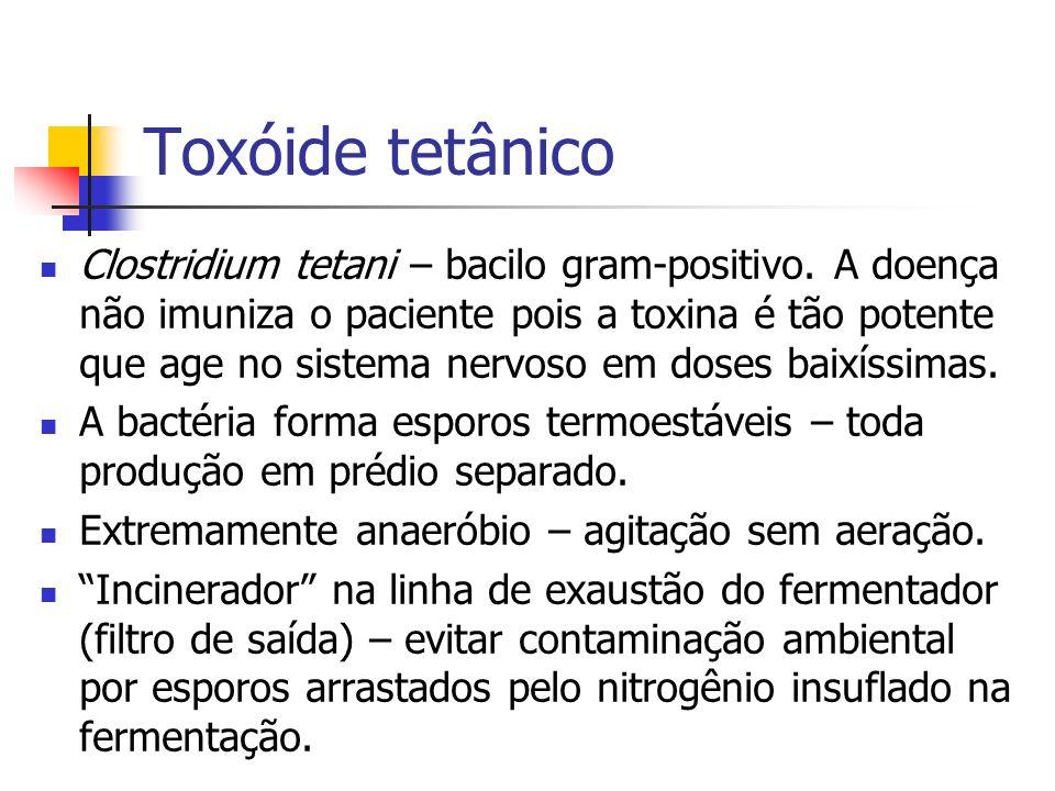 Toxóide tetânico Clostridium tetani – bacilo gram-positivo. A doença não imuniza o paciente pois a toxina é tão potente que age no sistema nervoso em