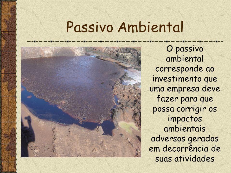 O passivo ambiental corresponde ao investimento que uma empresa deve fazer para que possa corrigir os impactos ambientais adversos gerados em decorrên