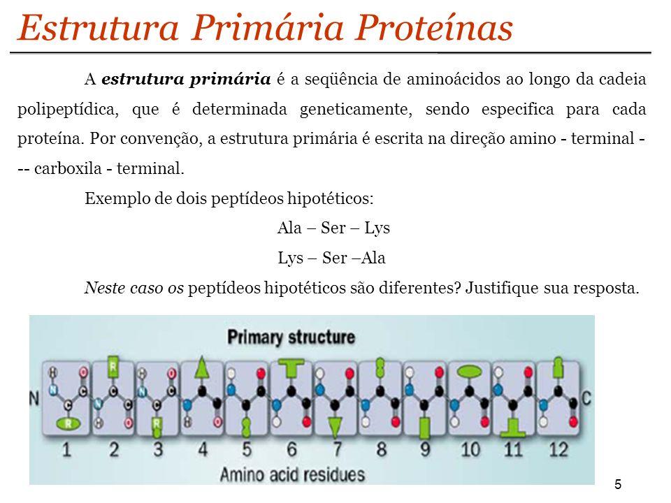 16 Estrutura Terciária Proteínas