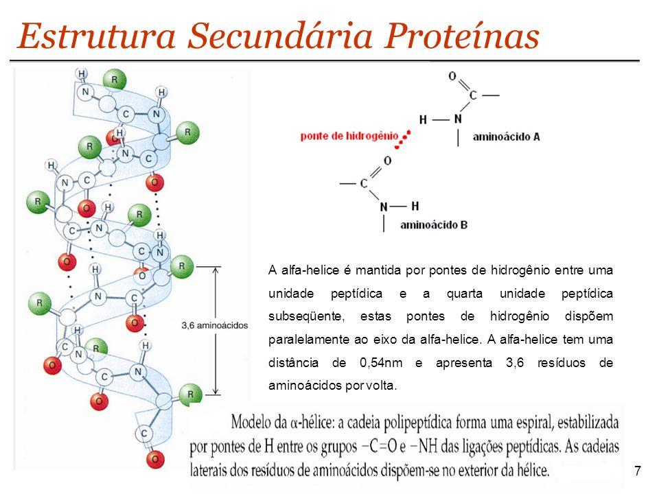 8 Estrutura Secundária Proteínas Apesar de alfa-hélice ser a estrutura secundário mais simples, existem outras conformações possíveis.