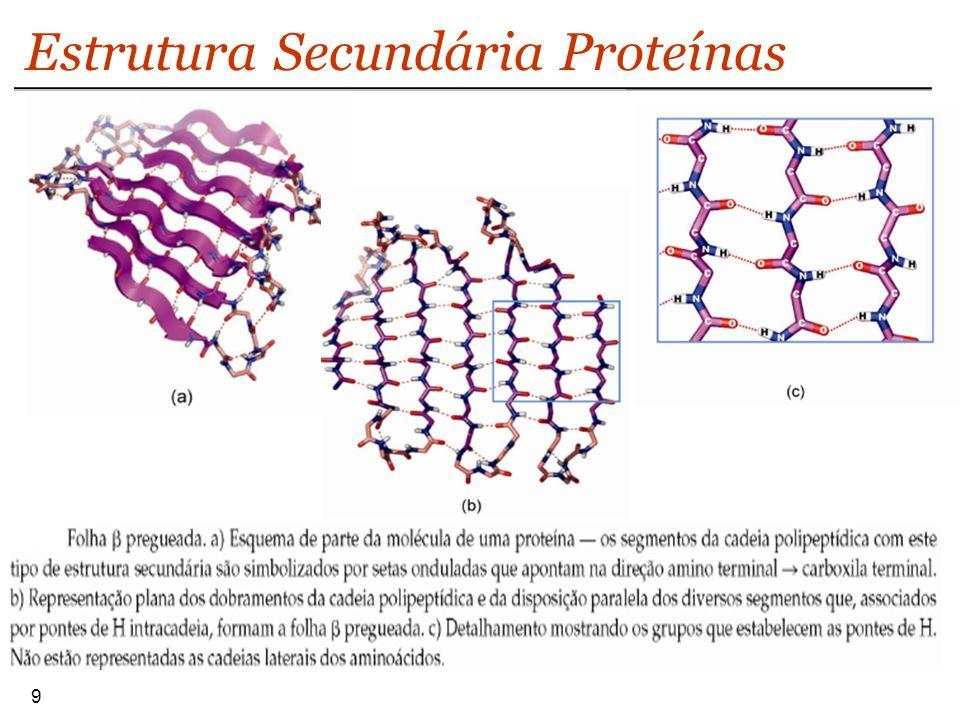 10 Estrutura Secundária Proteínas Os dois tipos de estruturas secundárias regulares (alfa-hélice e a beta- pregueada ocorrem nas proteínas em proporções muito diversas.