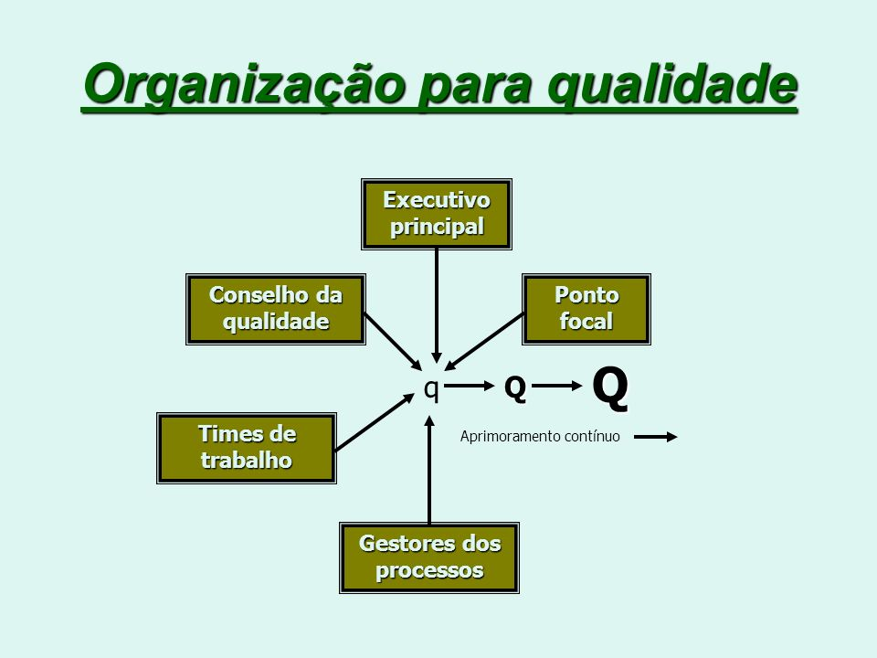 Organização para qualidade qQ Q Ponto focal Executivo principal Conselho da qualidade Times de trabalho Gestores dos processos Aprimoramento contínuo