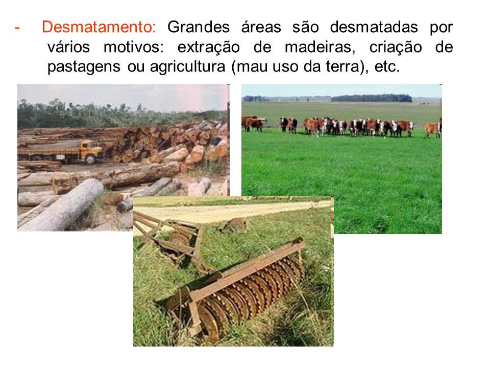 - Exploração excessiva de plantas e animais: Utilização de plantas e animais para alimentação, matéria-prima, etc.