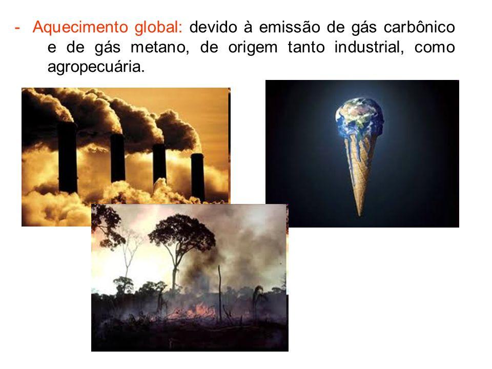 - Tráfico de animais silvestres: São estimadas 38 milhões de animais retirados ilegalmente dos ecossistemas brasileiros.