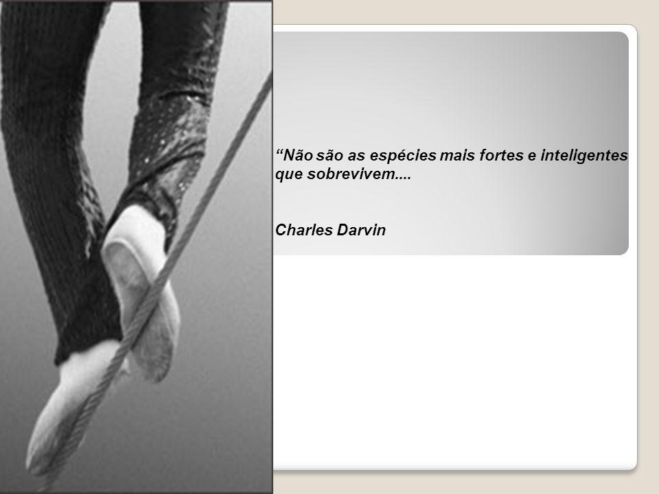 Não são as espécies mais fortes e inteligentes que sobrevivem.... Charles Darvin