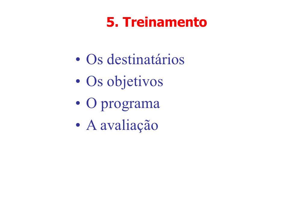 5. Treinamento Os destinatários Os objetivos O programa A avaliação