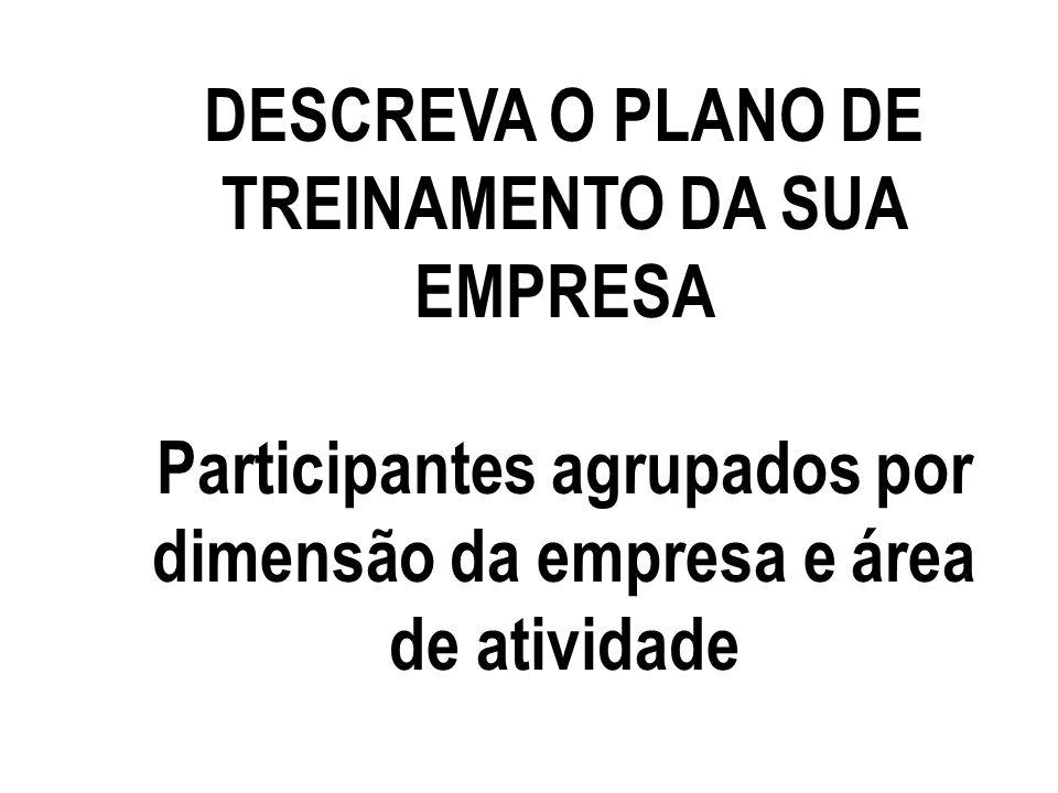 DESCREVA O PLANO DE TREINAMENTO DA SUA EMPRESA Participantes agrupados por dimensão da empresa e área de atividade