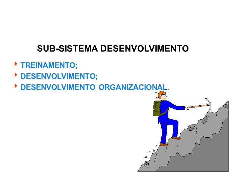 SUB-SISTEMA DESENVOLVIMENTO TREINAMENTO; DESENVOLVIMENTO; DESENVOLVIMENTO ORGANIZACIONAL.