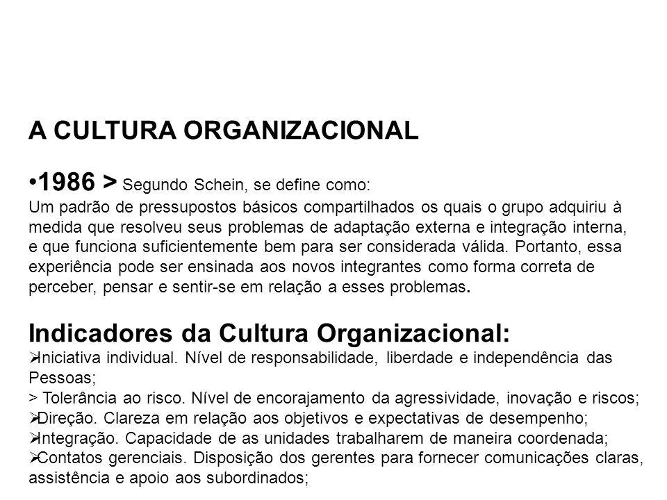 A CULTURA ORGANIZACIONAL 1986 > Segundo Schein, se define como: Um padrão de pressupostos básicos compartilhados os quais o grupo adquiriu à medida qu