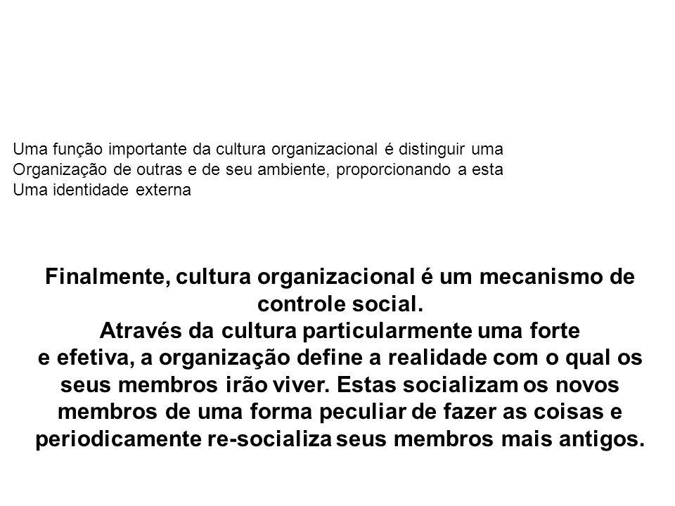 Uma função importante da cultura organizacional é distinguir uma Organização de outras e de seu ambiente, proporcionando a esta Uma identidade externa