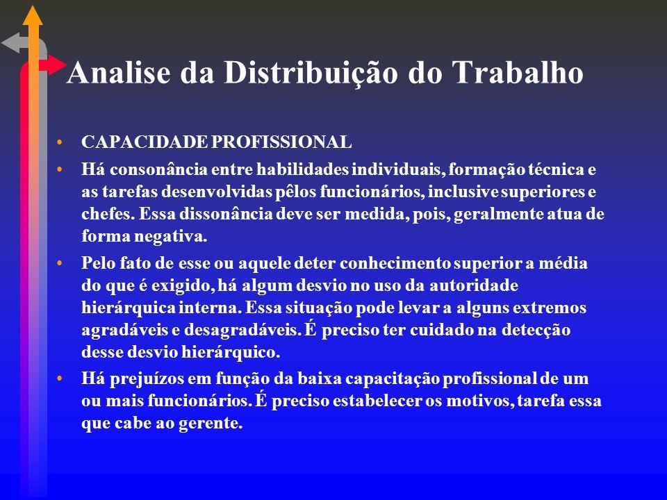 Analise da Distribuição do Trabalho CAPACIDADE PROFISSIONAL Há consonância entre habilidades individuais, formação técnica e as tarefas desenvolvidas