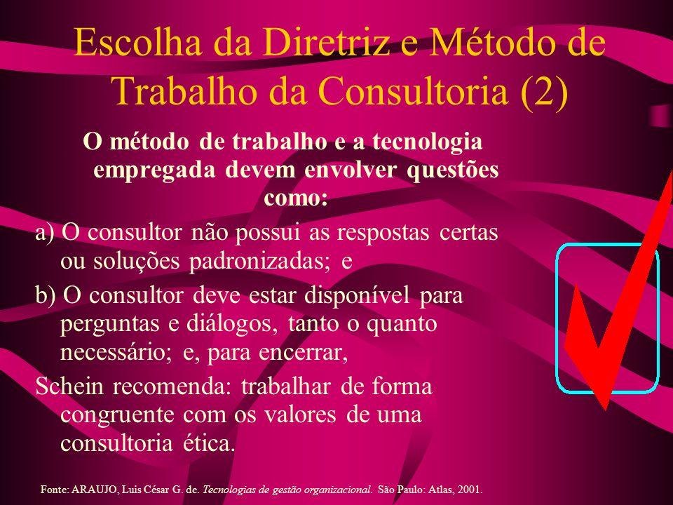 Escolha da Diretriz e Método de Trabalho da Consultoria (2) O método de trabalho e a tecnologia empregada devem envolver questões como: a) O consultor