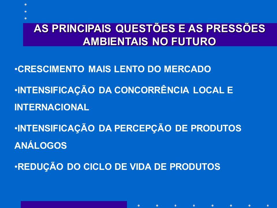 AS PRINCIPAIS QUESTÕES E AS PRESSÕES AMBIENTAIS NO FUTURO CRESCIMENTO MAIS LENTO DO MERCADO INTENSIFICAÇÃO DA CONCORRÊNCIA LOCAL E INTERNACIONAL INTEN