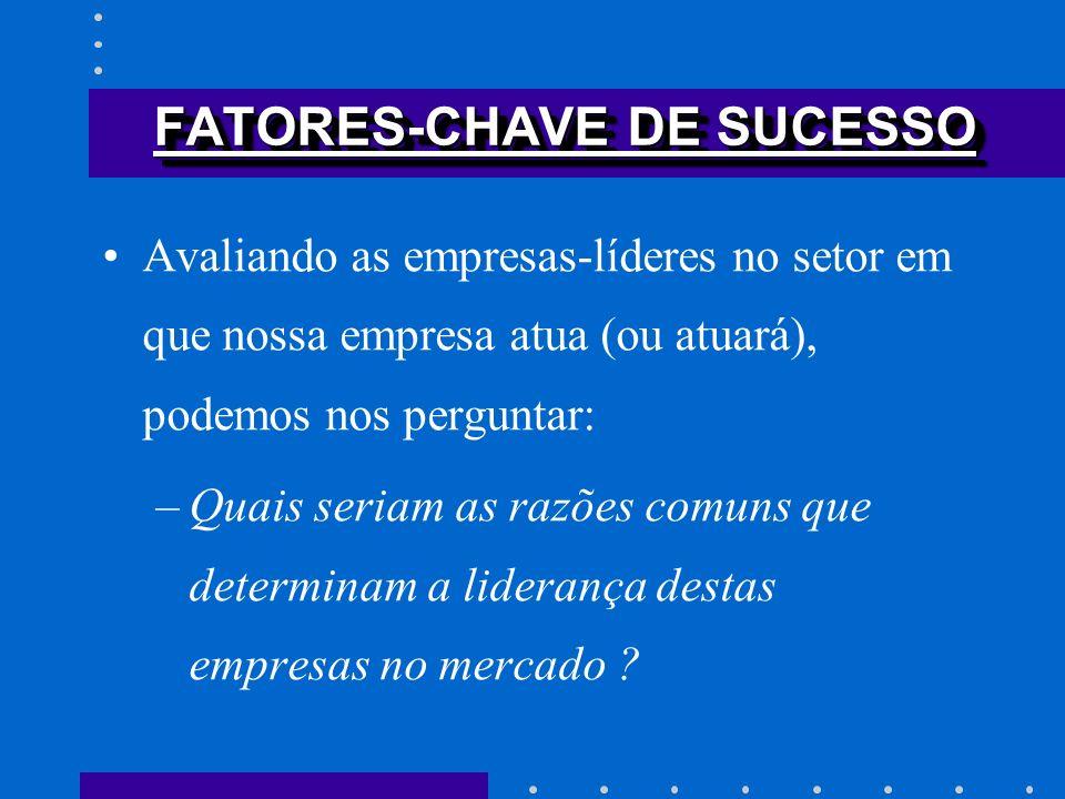 FATORES-CHAVE DE SUCESSO Avaliando as empresas-líderes no setor em que nossa empresa atua (ou atuará), podemos nos perguntar: –Quais seriam as razões