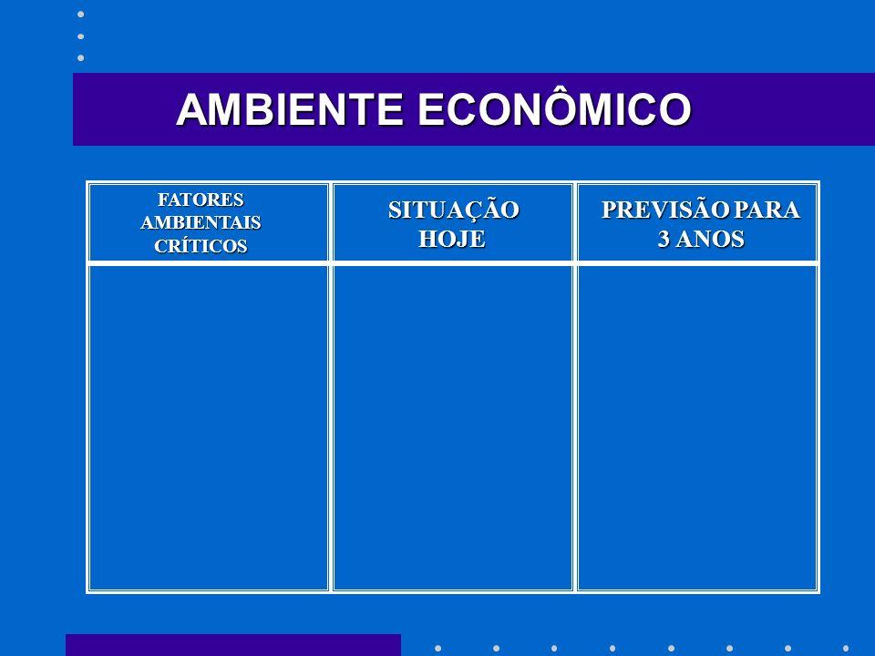 FATORESAMBIENTAISCRÍTICOS SITUAÇÃO HOJE HOJE PREVISÃO PARA 3 ANOS AMBIENTE ECONÔMICO