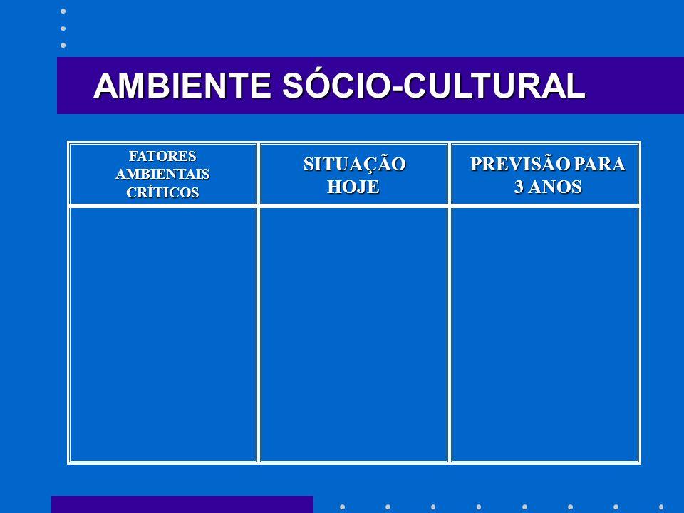 SITUAÇÃO HOJE HOJE PREVISÃO PARA 3 ANOS AMBIENTE SÓCIO-CULTURAL FATORESAMBIENTAISCRÍTICOS