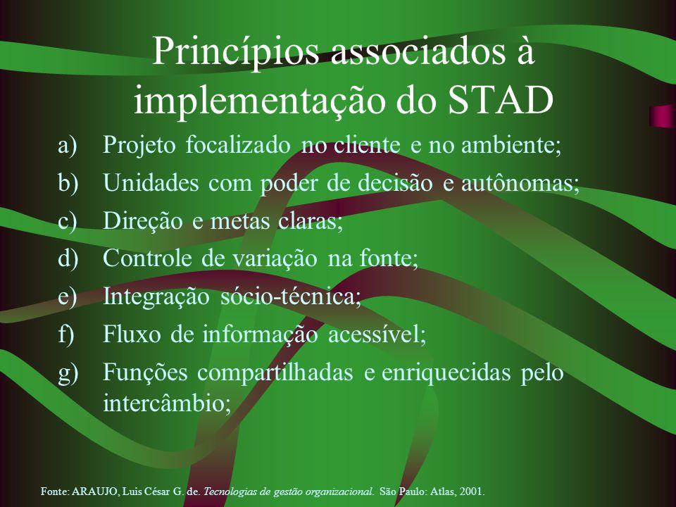 Princípios associados à implementação do STAD a)Projeto focalizado no cliente e no ambiente; b)Unidades com poder de decisão e autônomas; c)Direção e