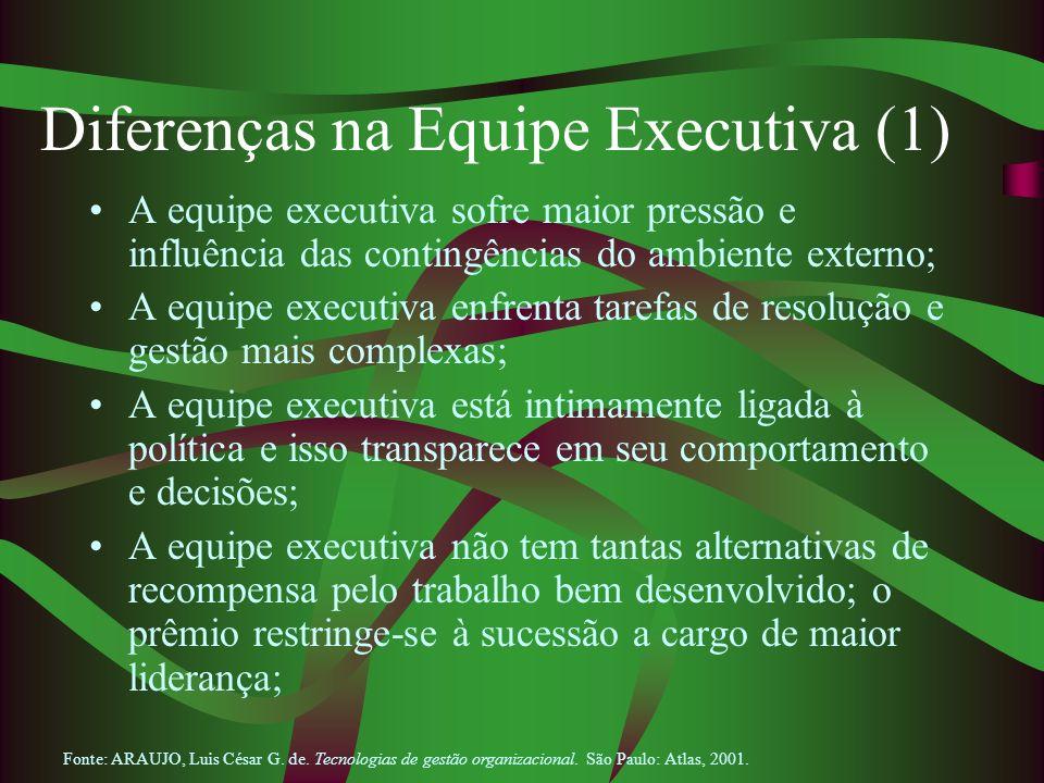 Diferenças na Equipe Executiva (1) A equipe executiva sofre maior pressão e influência das contingências do ambiente externo; A equipe executiva enfre