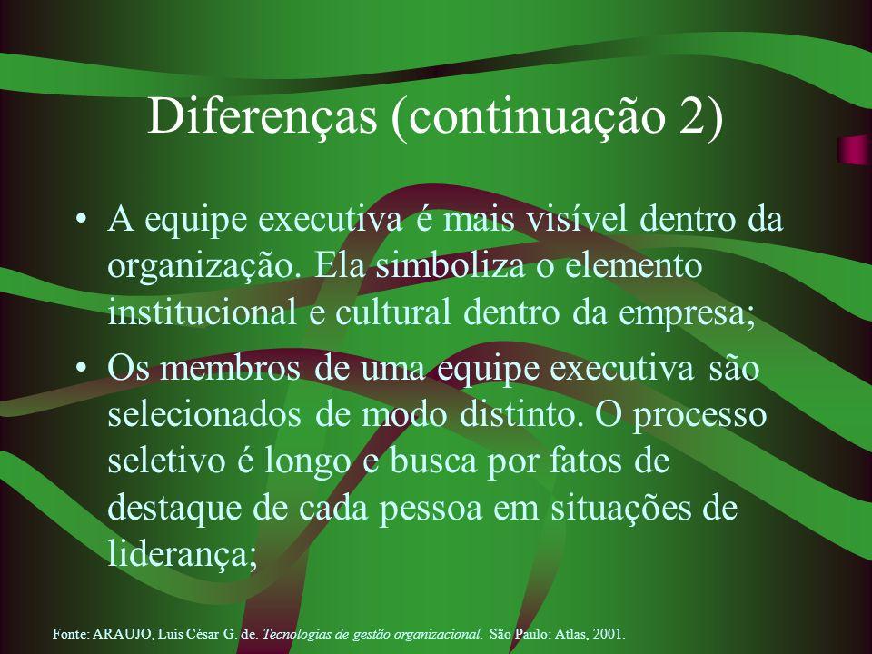 Diferenças (continuação 2) A equipe executiva é mais visível dentro da organização. Ela simboliza o elemento institucional e cultural dentro da empres