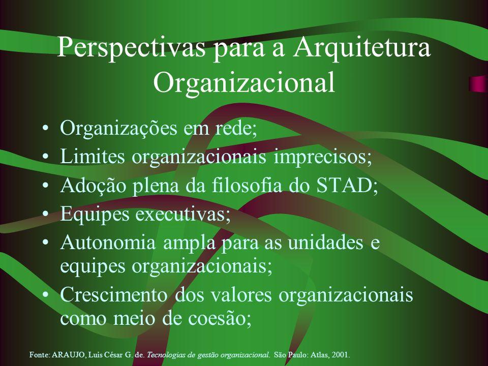 Perspectivas para a Arquitetura Organizacional Organizações em rede; Limites organizacionais imprecisos; Adoção plena da filosofia do STAD; Equipes ex