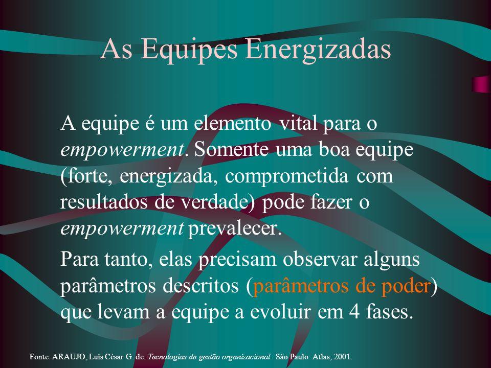 As Equipes Energizadas A equipe é um elemento vital para o empowerment. Somente uma boa equipe (forte, energizada, comprometida com resultados de verd