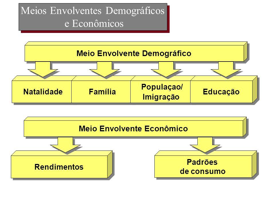 Meios Envolventes Demográficos e Econômicos Natalidade Família Populaçao/ Imigração Populaçao/ Imigração Educação Meio Envolvente Demográfico Rendimen