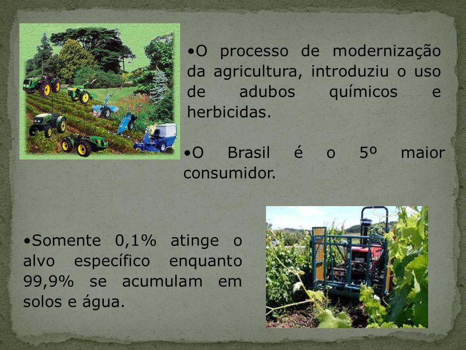 O processo de modernização da agricultura, introduziu o uso de adubos químicos e herbicidas. Somente 0,1% atinge o alvo específico enquanto 99,9% se a