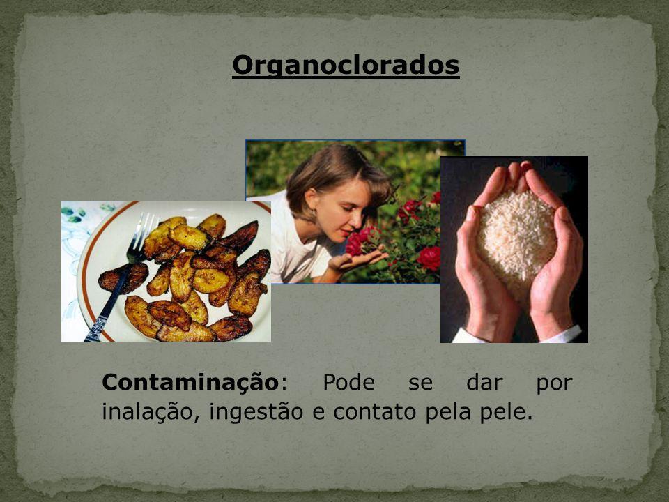Organoclorados Contaminação: Pode se dar por inalação, ingestão e contato pela pele.
