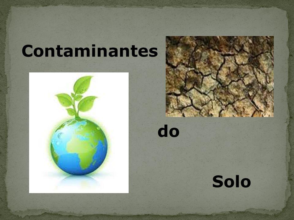 O solo é formado a partir de rochas, que com ajuda do clima e de microrganismos se transforma num material solto e macio.