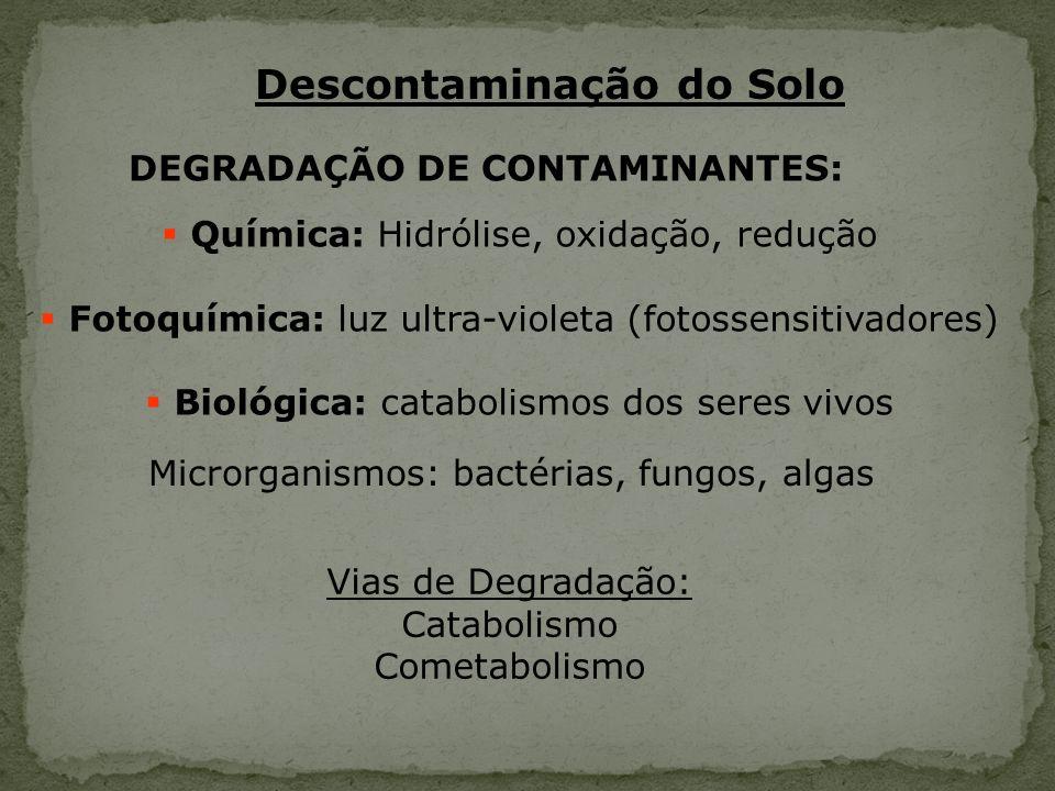 Descontaminação do Solo Química: Hidrólise, oxidação, redução Fotoquímica: luz ultra-violeta (fotossensitivadores) Biológica: catabolismos dos seres v