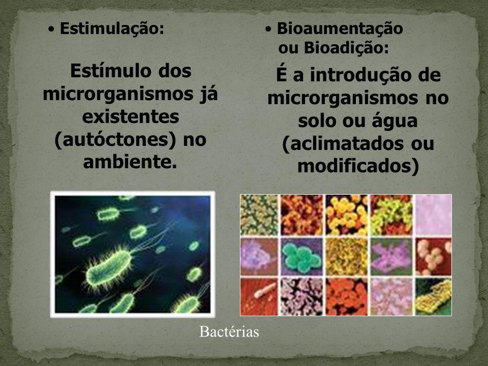 Estímulo dos microrganismos já existentes (autóctones) no ambiente. É a introdução de microrganismos no solo ou água (aclimatados ou modificados) Bioa