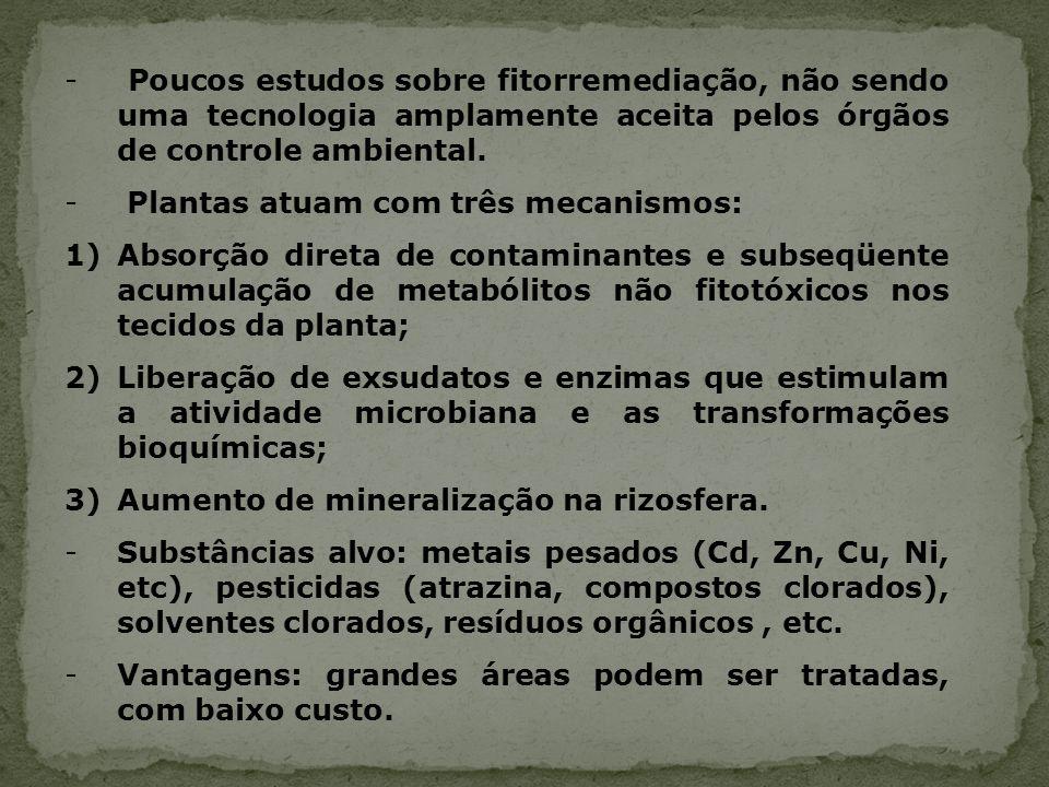 - Poucos estudos sobre fitorremediação, não sendo uma tecnologia amplamente aceita pelos órgãos de controle ambiental. - Plantas atuam com três mecani