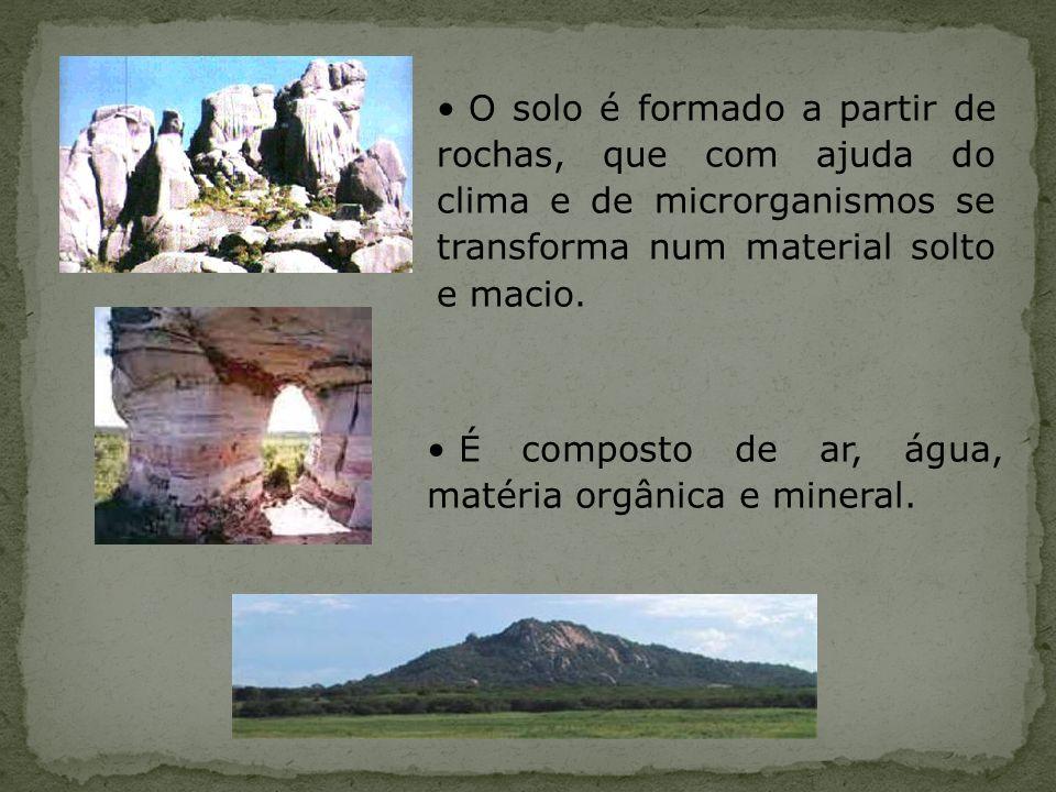 O solo é formado a partir de rochas, que com ajuda do clima e de microrganismos se transforma num material solto e macio. É composto de ar, água, maté