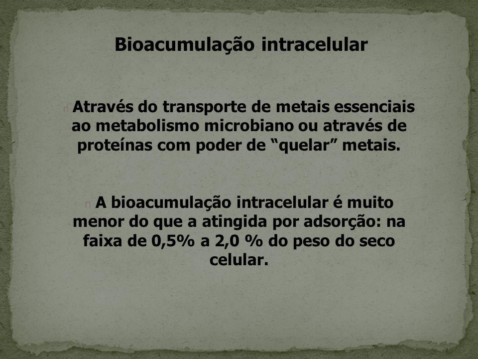 Bioacumulação intracelular n Através do transporte de metais essenciais ao metabolismo microbiano ou através de proteínas com poder de quelar metais.